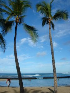 813360_tropical_beach