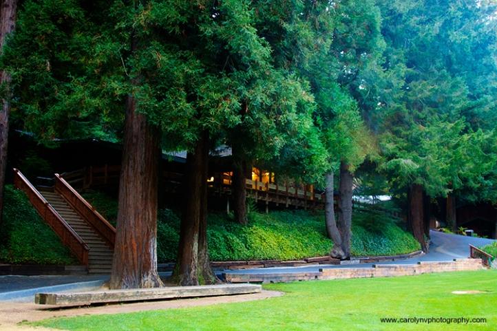 Koinonia, Santa Cruz, Camp Koinonia, Carolyn V